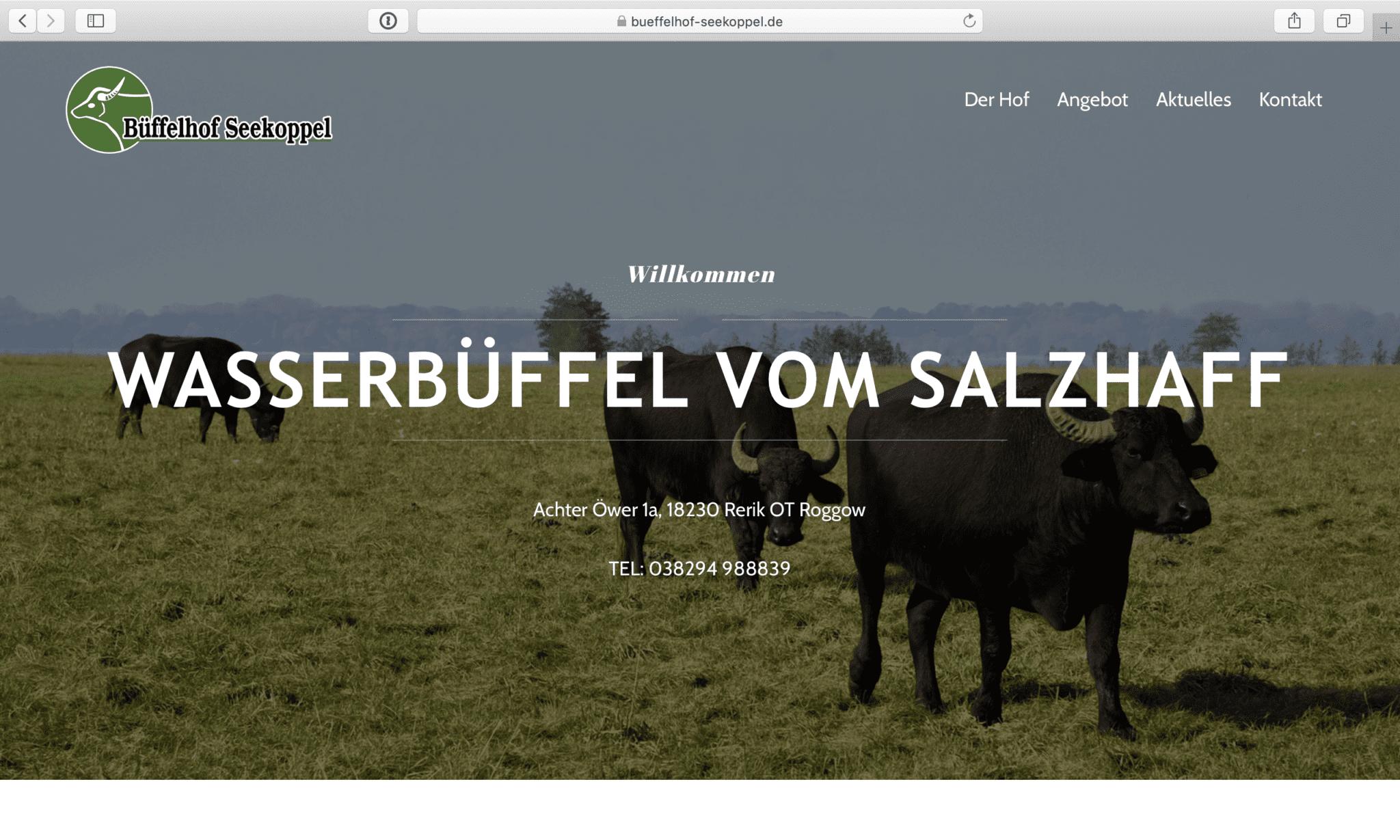 www.bueffelhof-seekoppel.de