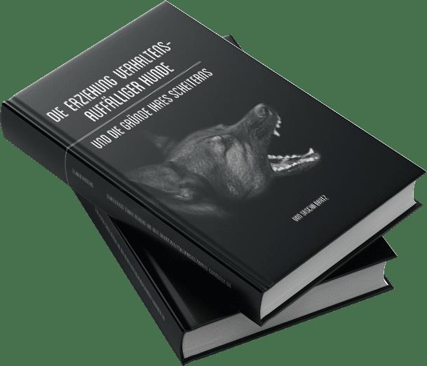 MU 2tes Buch Bartz V1